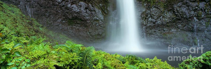 Active Photograph - Kauai Inland Falls by David Cornwell/First Light Pictu - Printscapes