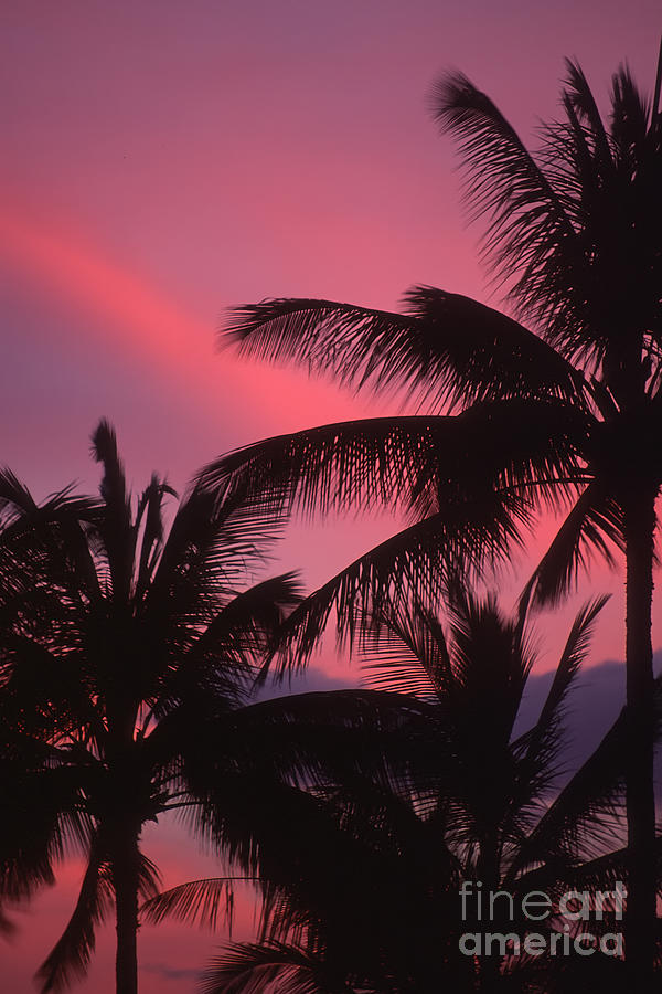 Hawaii Photograph - Kauai Sunset 2 by Stan and Anne Foster
