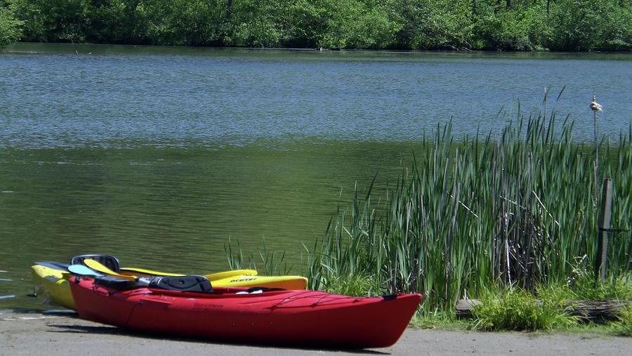 Raccoon Creek State Park Photograph - Kayak At Raccoon State Park by Joyce Wasser