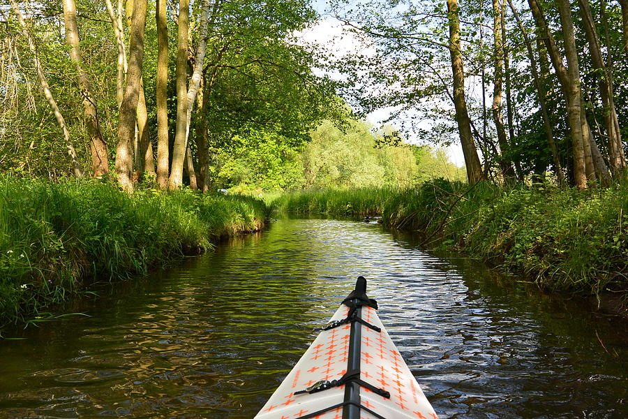 Nature Preserve Photograph - Kayaking Germanys Spreewald Biosphere by Two Small Potatoes