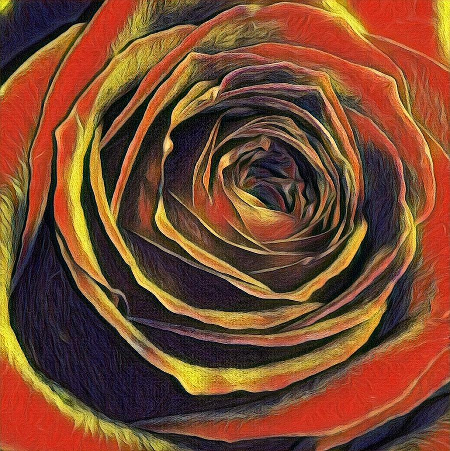 Kayla Rose by Kimberly Woyak