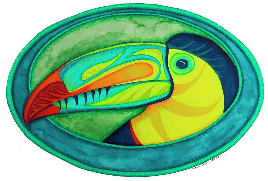 Toucan Drawing - Keel Billed Toucan by Tara Warburton-Schwaber