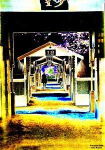 Horse Racing Digital Art - Keeneland Barns by Gary Rogers