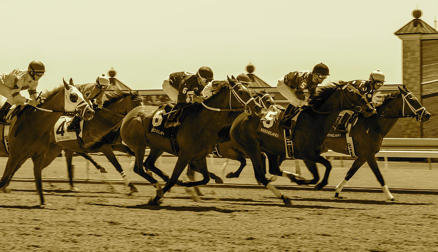 Keenland Sepia by Dan Hefle