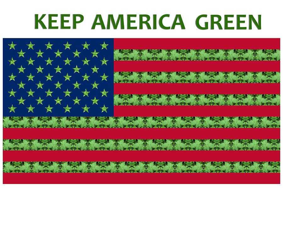 Keep America Green USA Flag by Julia L Wright
