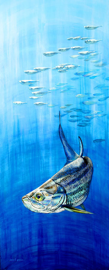 Tarpon Below by Joan Garcia