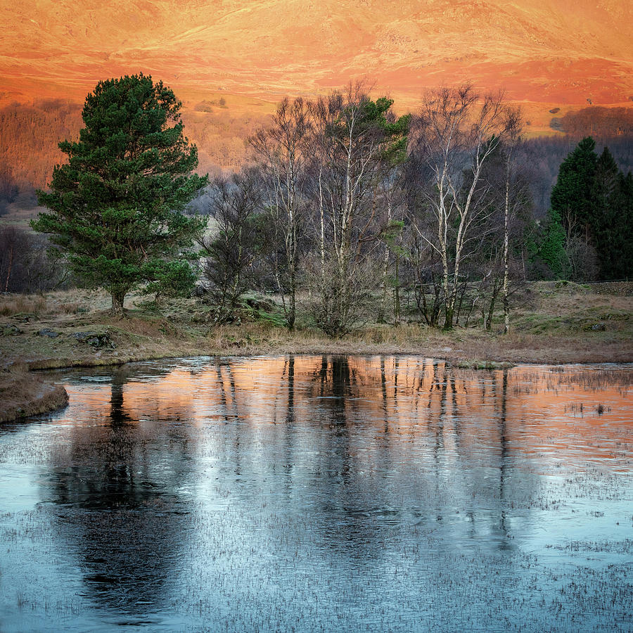Kelly Photograph - Kelly Hall Tarn at Torver by Phillips and Phillips