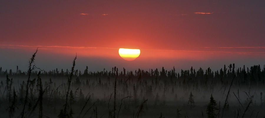 Beautiful Sunrise Photograph - Kenai Peninsula Early Sunrise by Mary Gaines