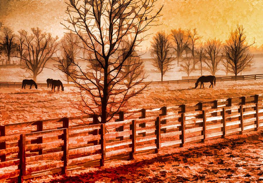 Usa Photograph - Kentucky Horse Farm  by Dennis Cox WorldViews