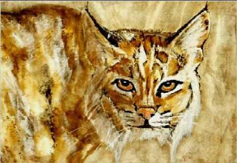 Wildcat Painting - Kentucky WIldcat by Travis Kelley