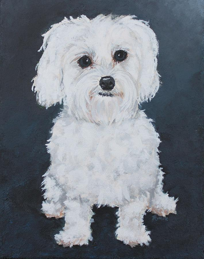 maltese painting kenzie portrait of a maltese painting by ruthie sutter 2373