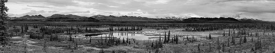 Pond Photograph - Kettle Pond And The Alaska Range by Peter J Sucy