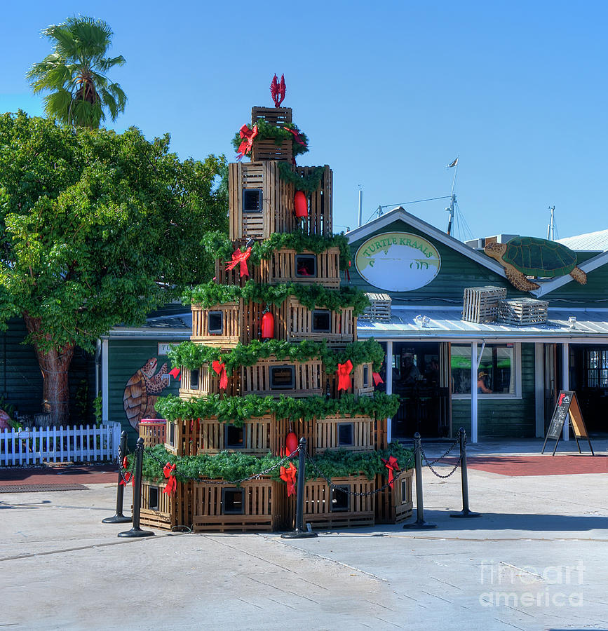 Key West Christmas Photograph by Ules Barnwell