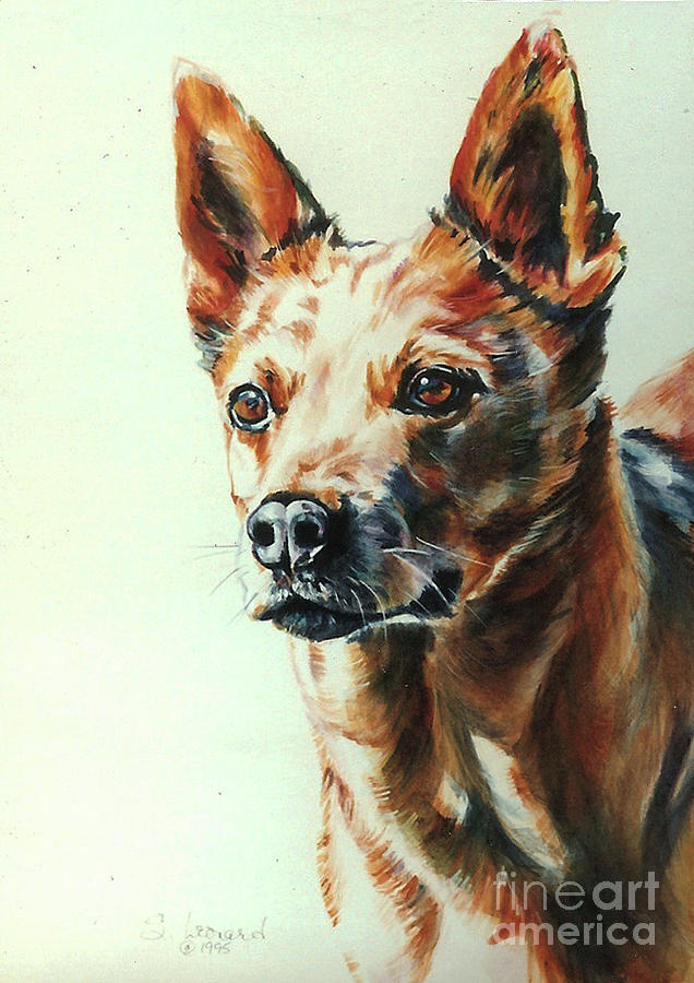 Australian Cattle Dog Painting - Kid by Suzanne Leonard