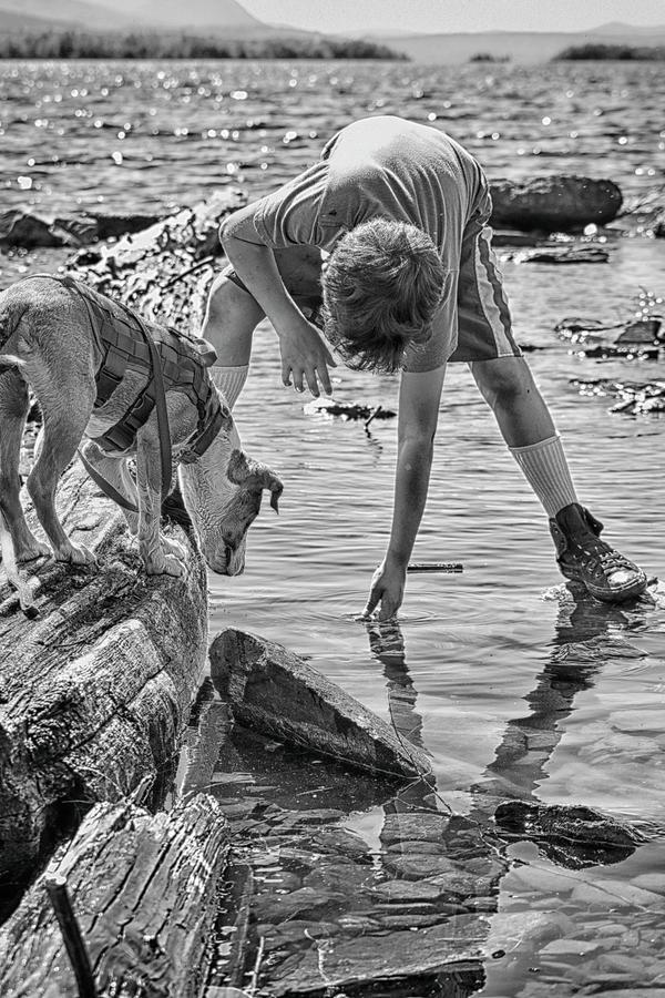 Catahoula Leopard Photograph - Kids Best Friend Explores Alongside by Justin Mountain
