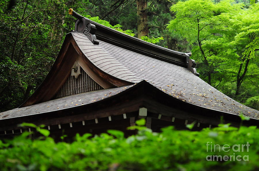 Shrine Photograph - Kifune Shrine by Stevyn Llewellyn