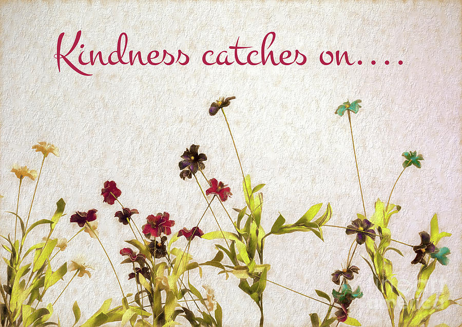 Kindness Catches On Photograph
