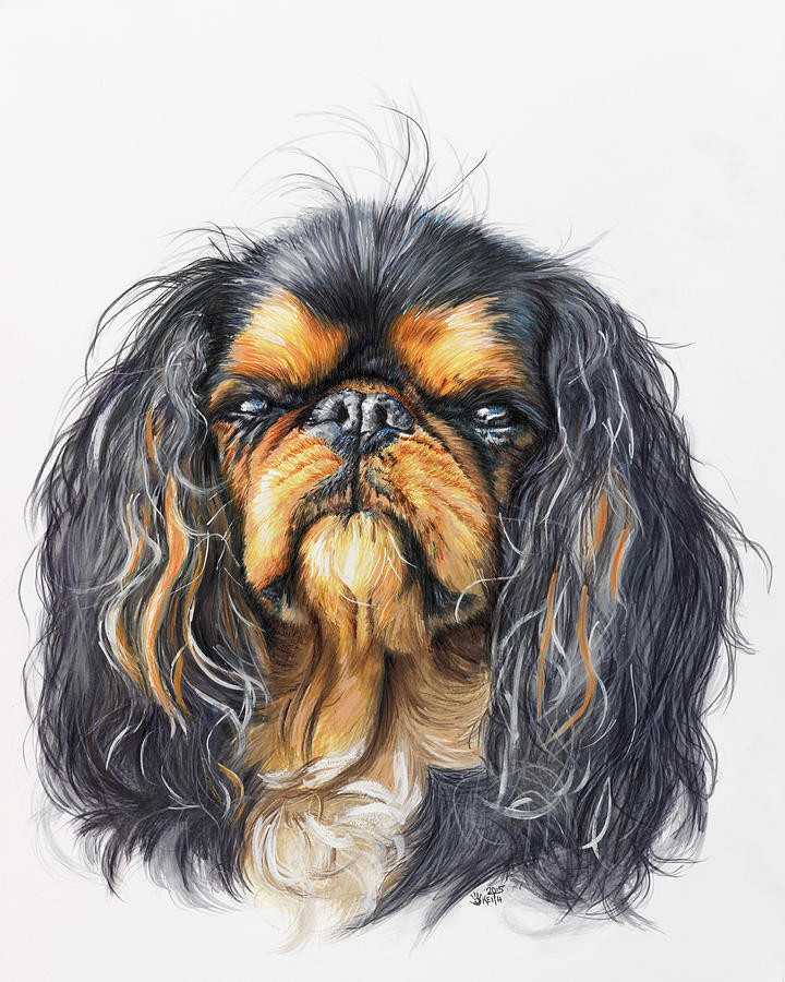 Toy Breed Painting - King Charles Spaniel In Watercolor by Barbara Keith