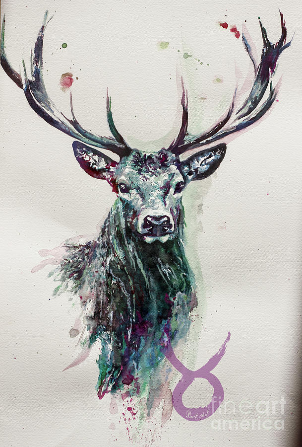 King Deer Painting By Ute Bescht