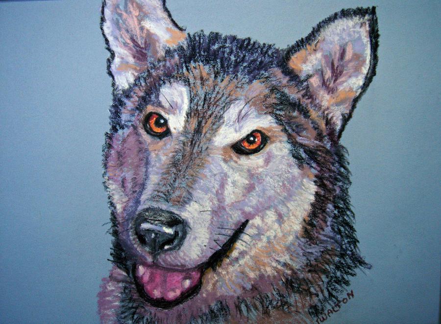 Alaskan Malamute Painting - King by Judy Fischer Walton