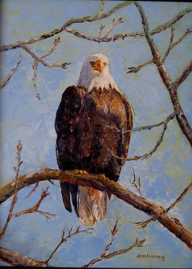Eagle Painting - King Of The Mississippi by Jan Harvey