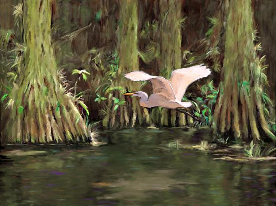 King of the Swamp by David Van Hulst