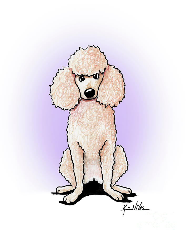 Poodle Drawing - Kiniart Poodle by Kim Niles