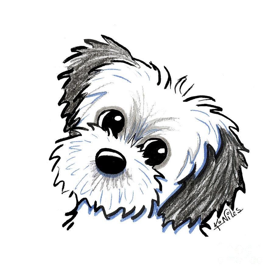 Shih Tzu Drawing - KiniArt Shih Tzu Cutie by Kim Niles
