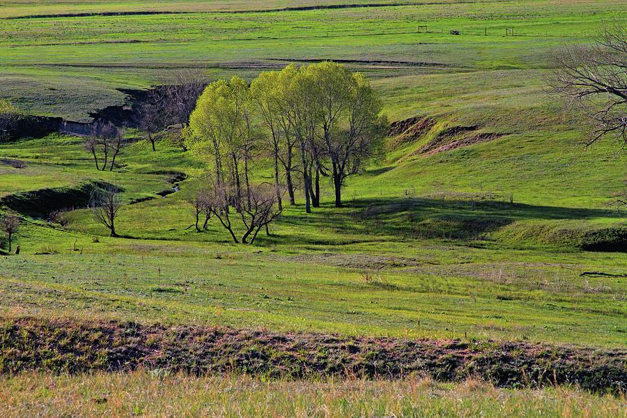 Kiowa Creeks Valley 2 Photograph