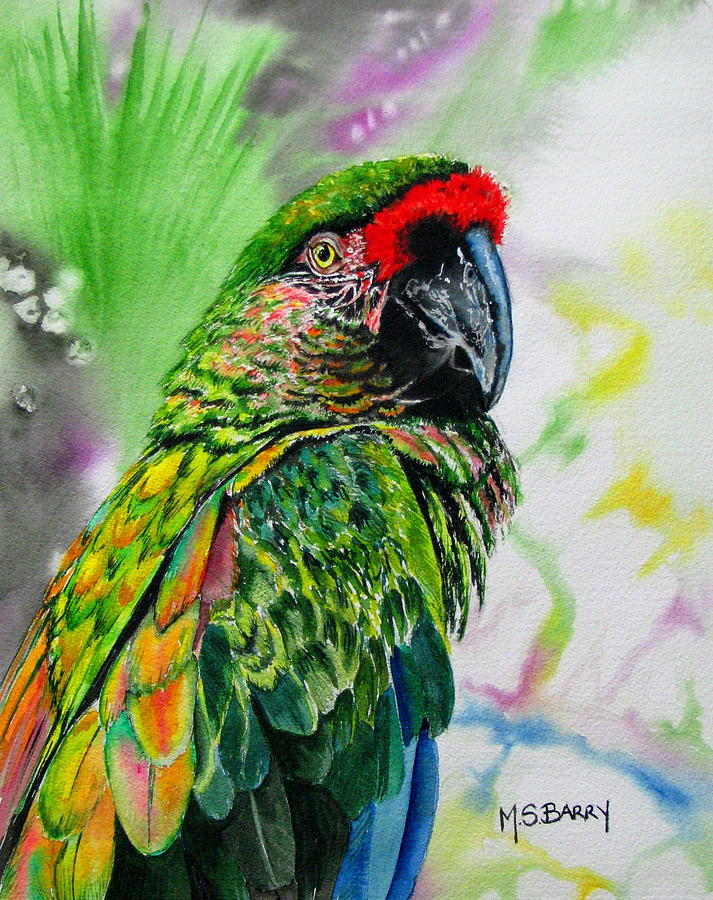 Parrot Painting - Kiowa by Maria Barry