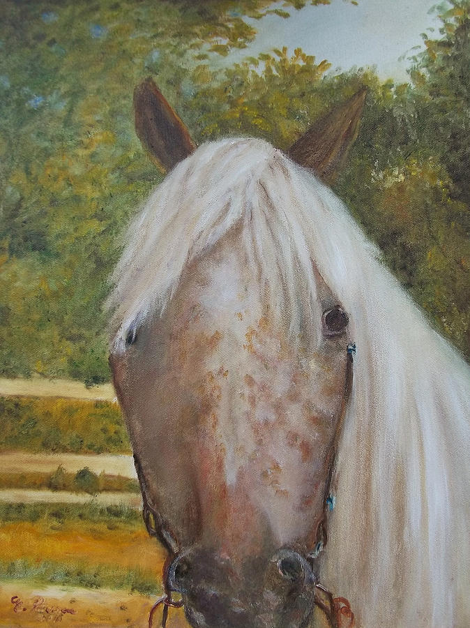 Horse Painting - Kisha by Eydie Paterson