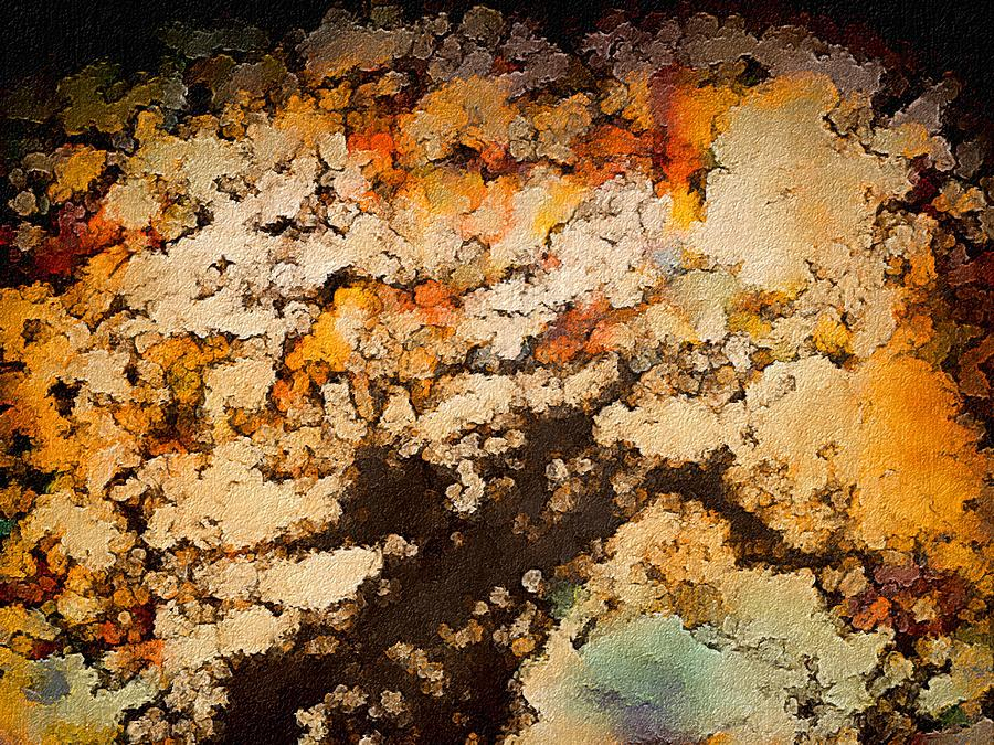 Autumn Tree Digital Art - Kissed By Autumns Winds by Susan Maxwell Schmidt