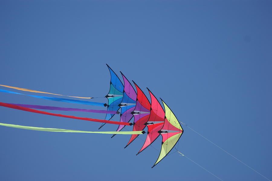 Wind Photograph - Kite by Heidi Poulin