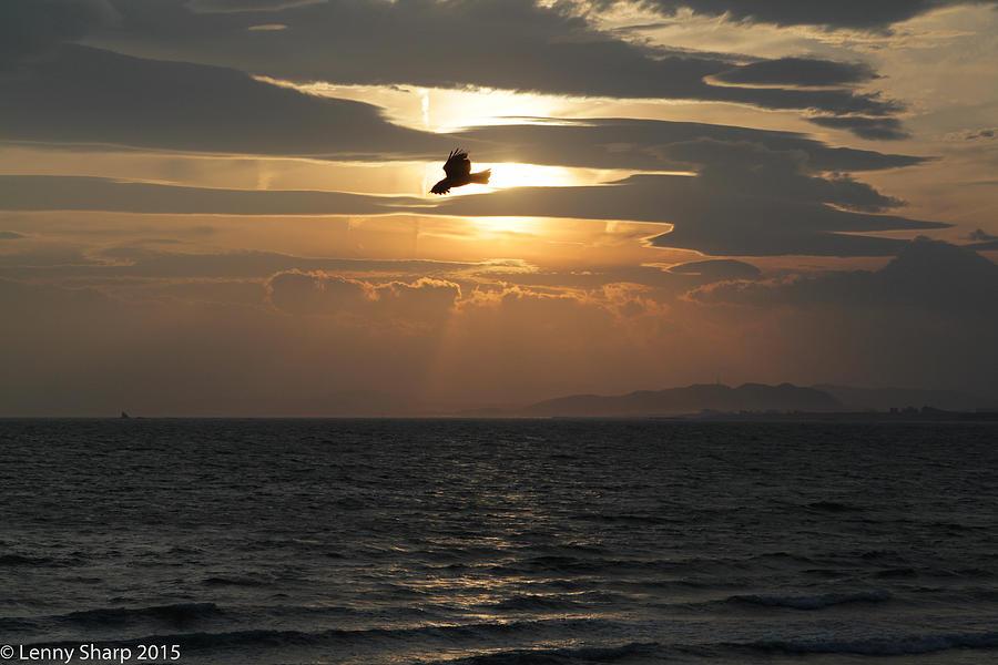 Japan Photograph - Kite Sunset by Leonard Sharp