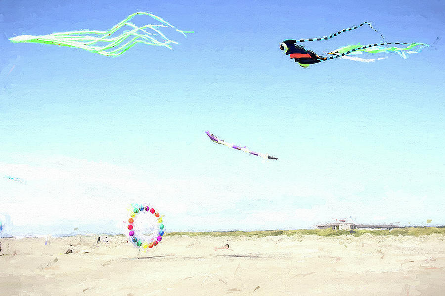Kites at Ocean Shore  by Cathy Anderson