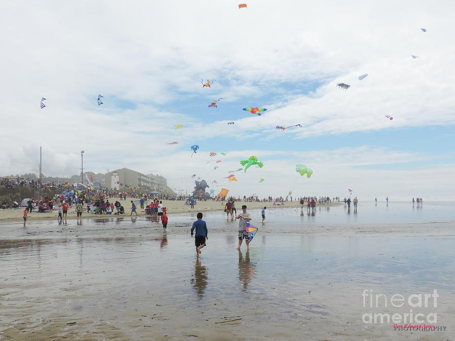 Kites Festival by Don Edward Jones