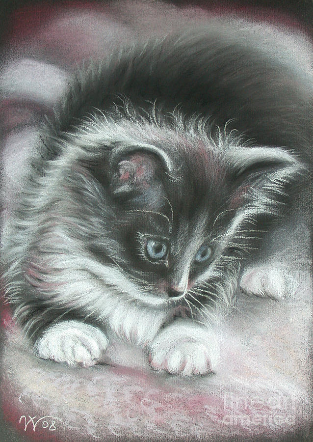 Kitten Painting - Kitten by Valentina Vassilieva