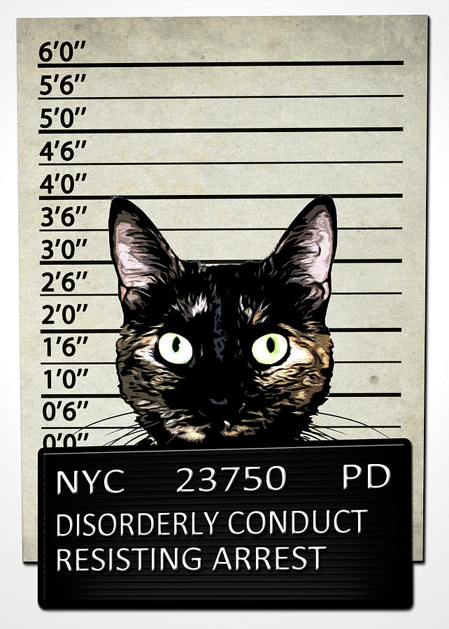 Cat Mixed Media - Kitty Mugshot by Nicklas Gustafsson