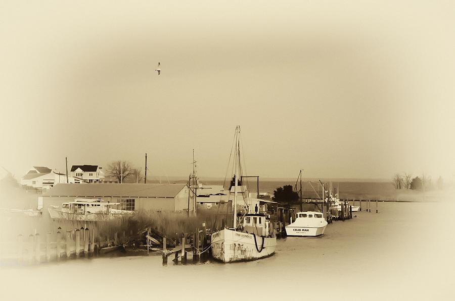Tilghman Photograph - Knapps Narrows Tilghman Island by Bill Cannon