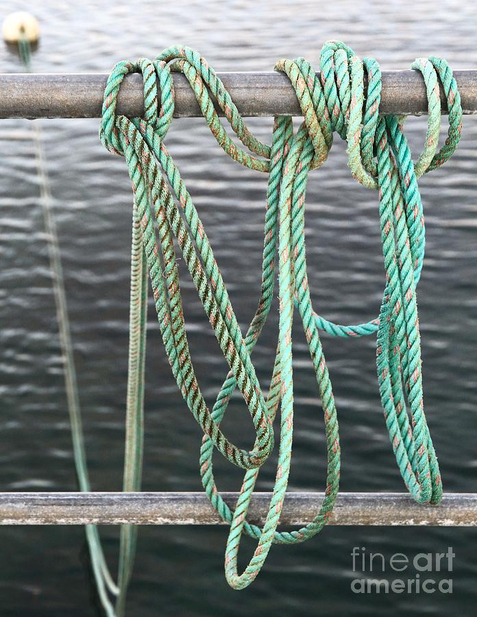Stephen Mitchell Photograph - Knot Of My Warf II by Stephen Mitchell