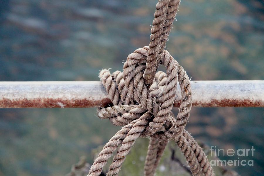 Rope Photograph - Knot Of My Warf by Stephen Mitchell