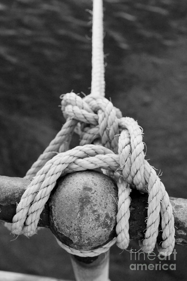 Stephen Mitchell Photograph - Knot On My Warf Iv by Stephen Mitchell