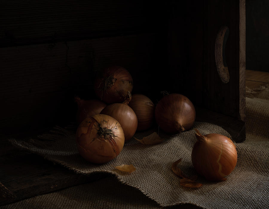 Onions Photograph - Know Your Onions by Phillips and Phillips