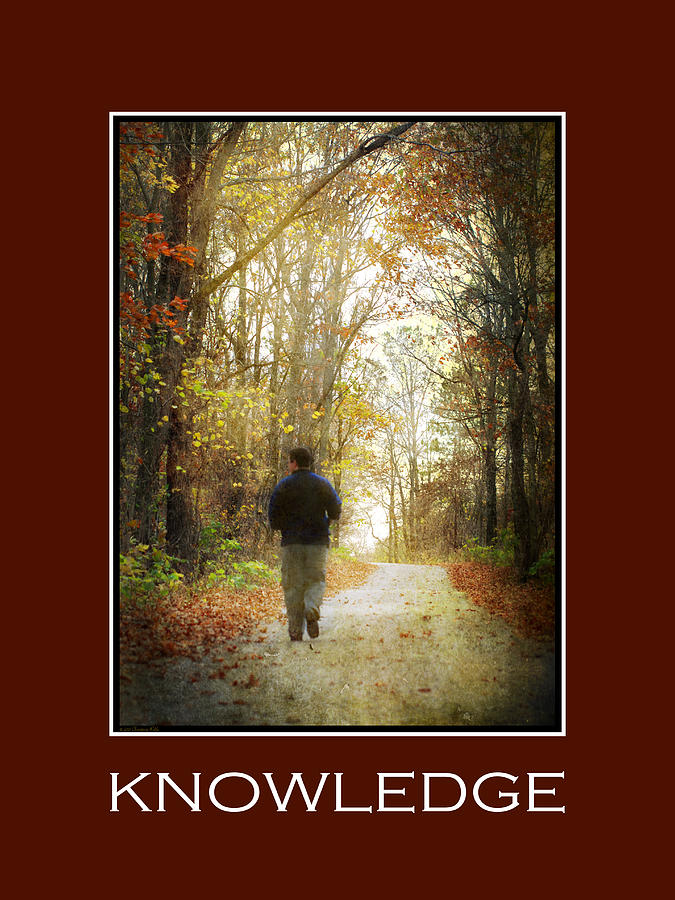 Knowledge Mixed Media - Knowledge Inspirational Motivational Poster Art by Christina Rollo
