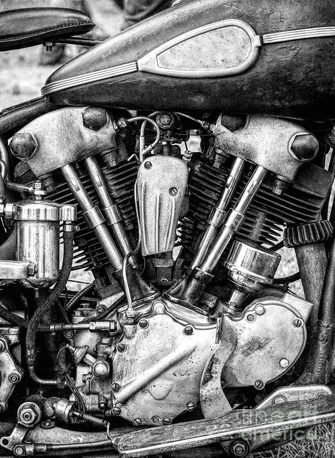Vintage Photograph - Knucklehead by Tim Gainey