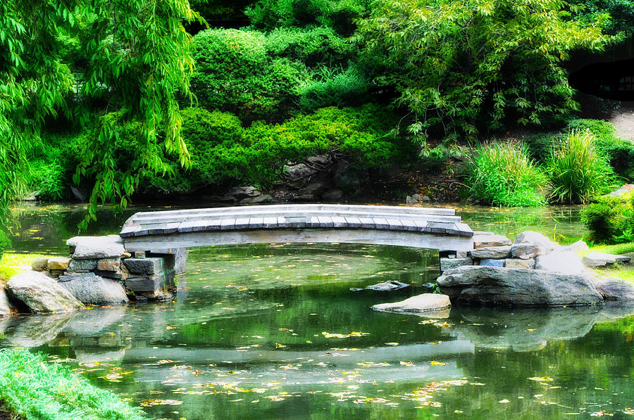 Koi pond bridge japanese garden photograph by bill cannon for Japanese koi pond garden