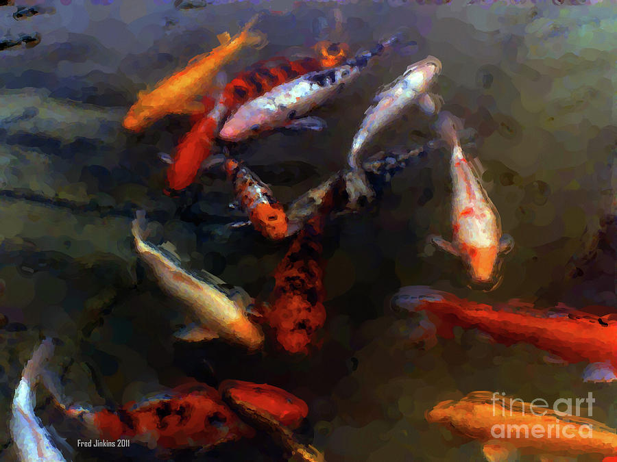 Fish Digital Art - Koi Pond Watercolor by Fred Jinkins