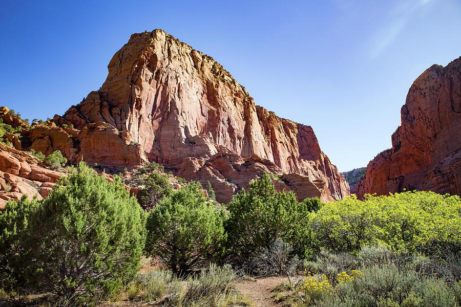 Kolab Canyons Utah by Kathleen Scanlan