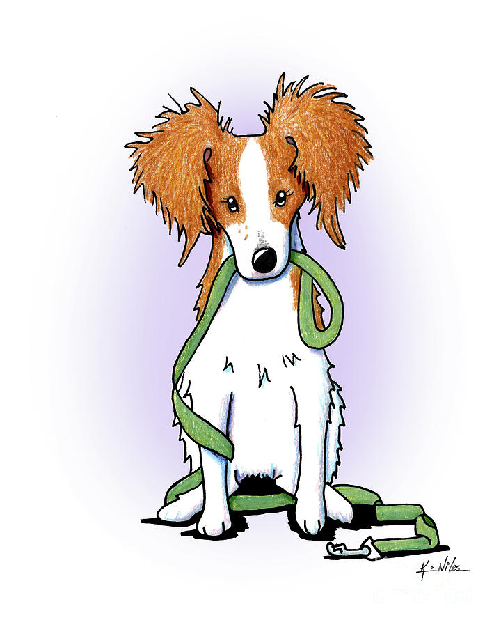 Kooikerhondje Drawing -  Kooikerhondje With Leash by Kim Niles