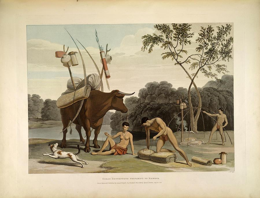 Daniell Drawing - Korah Hottentots Preparing To Remove by Samuel Daniell